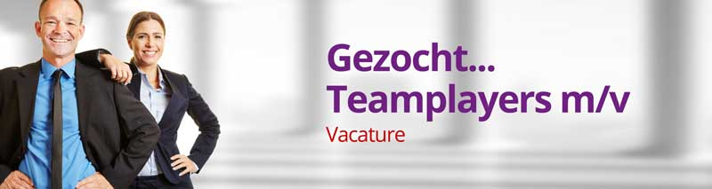 Vacature van der Lans & van der Leek | Accountants en Adviseurs